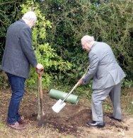 Planting the commemorative tree.